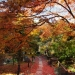 Kyoto-2013-12