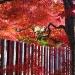 Kyoto-2013-19