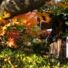 Kyoto-2013-20