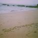 03 tindakon beach04
