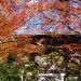kyoto-2013-30
