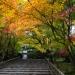 kyoto-2013-31